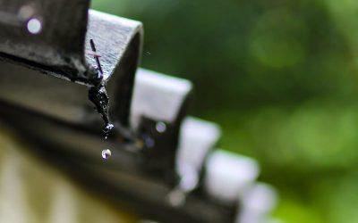 Quais as diferenças entre reuso de água e aproveitamento de água das chuvas?