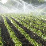 consumo de água em diferentes setores da economia e da população do país