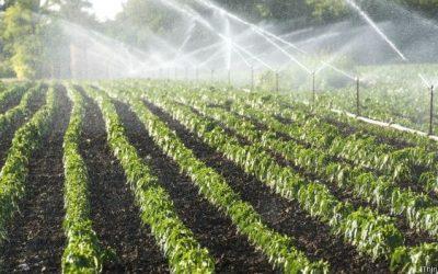 Consumo de Água em Diferentes Setores da Economia e da População do Brasil